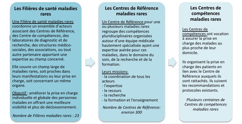 Organisation de soins en France pour les maladies rares
